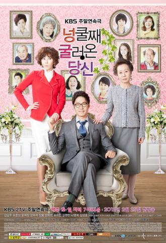 My_Husband_Got_a_Family_poster.jpg
